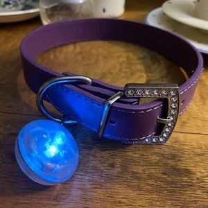 Display Dogs Collar with Bling and Light